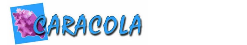 Logocaracolablog990x180