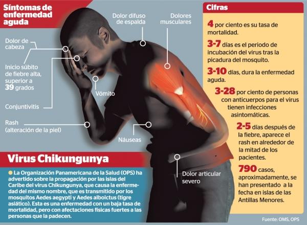 600x400_1391304741_Infografia-Chikungunya3