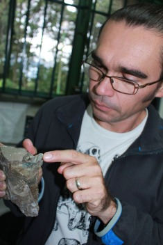 El fósil se encontró en el estado Táchira. Foto Marié Fuzeau